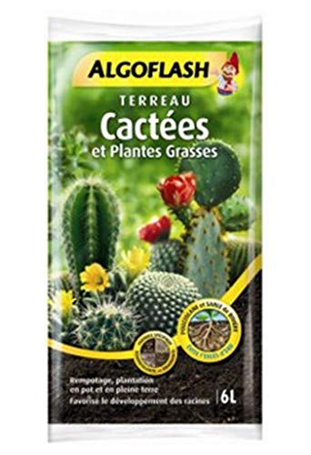 Algoflash Terreau Cactées et Plantes Grasses Formule Spécifique 6L (Lot de 2 Soit 12L)
