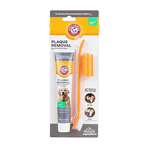 Arm amp Hammer for Pets Dog Dental Care Fresh Breath Kit for Dogs | Includes Arm amp Hammer Baking Soda Dog Toothpaste and Dog Toothbrush | Dog Plaque Removal Kit