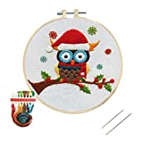 Nuberlic Embroidery Kit, Cross Stitch Kits Embroidery Kit for Beginners Adults Needlepoint with Embroidery Hoop Cloth Needles Threads