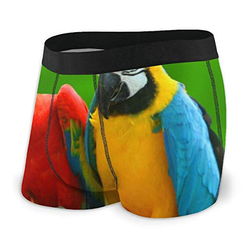 King Kong Parrot Men's Boxer Briefs Regular Soft Breathable Comfortable Underwear Black
