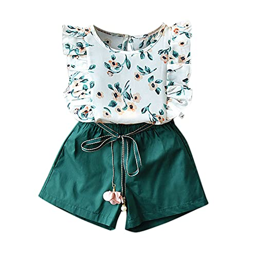 Briskorry Conjunto de ropa de verano para bebé, niña, con volantes, chaleco, top y pantalones cortos, conjunto de ropa para niños de 6 meses a 4 años