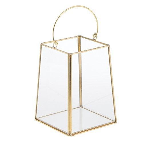 FLAMEER Boîte Terrarium en Verre Transparent Maison Serre de Table pour Plante Micropaysage Bijoux Organisateur Décoration Fête
