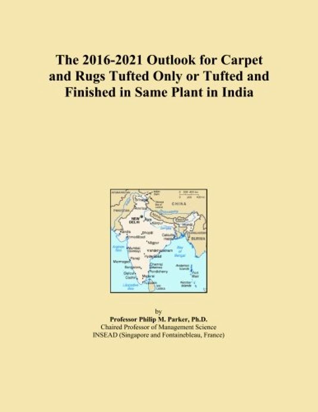 バイパス蒸発する神話The 2016-2021 Outlook for Carpet and Rugs Tufted Only or Tufted and Finished in Same Plant in India