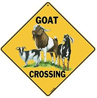 CROSSWALKS Goat Crossing 12