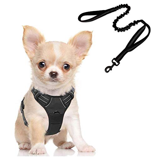 rabbitgoo Dog Harness No-Pull Pet Harness with Bungee Tactical Dog Leash, Adjustable Outdoor Pet Vest 3M Reflective Oxford Material Vest for Dogs Easy Control (Black, Small)