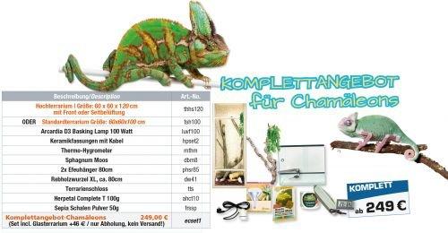Komplettangebot: Für Chamäleons (60x60x120cm Hochterrarium)