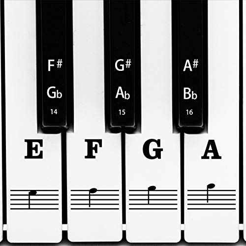 AIEX Piano Keyboard Music Note Full Set Stickers Removable & Transparent for White & Black 88/61/54/49 Keys