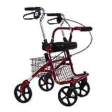 PNYGJZXQ Caminante con ruedas Carro de compras Old Man Trolley Tome una silla de...