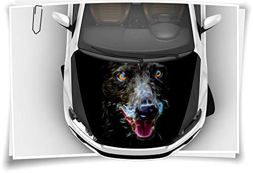 Medianlux Hund Wolf Abstract Animal Motorhaube Auto-Aufkleber Steinschlag-Schutz-Folie Airbrush Tuning Car-Wrapping Luftkanalfolie Digitaldruck Folierung