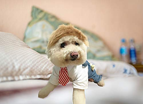 FMJI Trump Style Dog Wig Halloween Costumes - Pet Cosplay Hat and Hair Accessories Donald Dog with Collar & Tie Head Neck Wear Apparel, Toys for Christmas, Parties, Festivals (Neck Circum 15 inch)