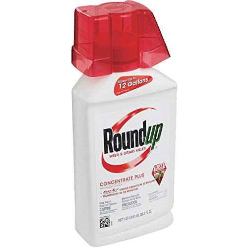 Roundup Weed & Grass Killer Concentrate 36.8 Oz -  5100610