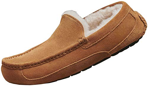 UGG Men's Ascot Slipper, Chestnut, 11