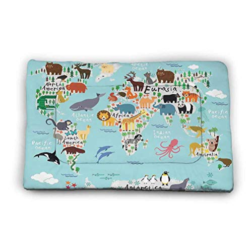 Washable Puppy Pad Australia