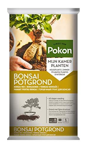 Pokon Bonsai-Erde, Substrat mit 60 Tage Startdünger, Vulkanstein und Kalk, 5L