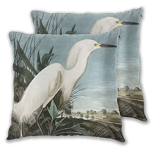 Lesif Juego de 2 fundas de cojín, garza nevada o garza blanca de aves de América, funda de cojín suave, funda de cojín para sofá, cama, oficina, 45,7 x 45,7 cm