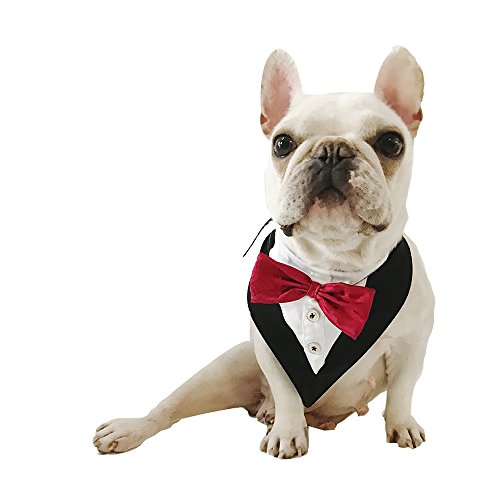 CheeseandU Wedding Collar for Pets Tuxedo Bandana with Bowtie and Botton Adjustable Collar for Pet Wedding Party Valentines Day Costume and Pet Birthday Photo Prop Red