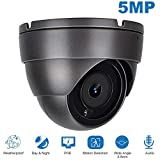 Anpviz IP POE Dome 5MP Security Camera,Audio Super HD Security Camera with Microphone & ONVIF Supports,Indoor Outdoor Wide Angle 2.8 mm Lens IP66 Weatherproof 20m Night Vision(IPC-3150G-S)