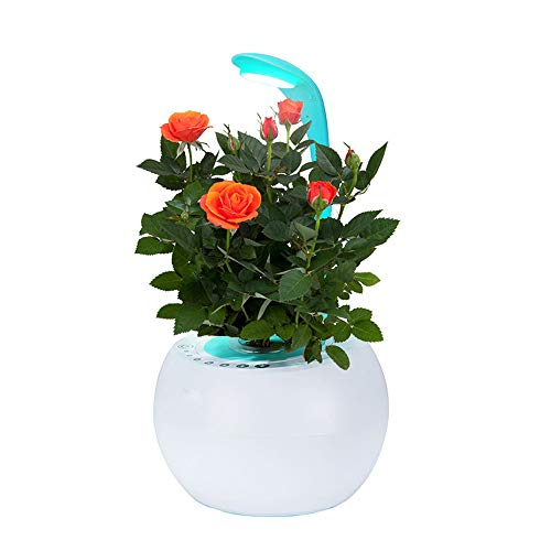 Mini Installatie Groeit Licht Nursery Bloempotten Met Lamp Voor Indoor Office Potted Smetteloos Cultuur Garden Desktop LCD Grow Lamp Met Intelligent Music