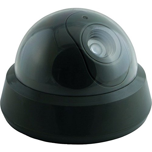 Decoy Camera (Pack of 2)