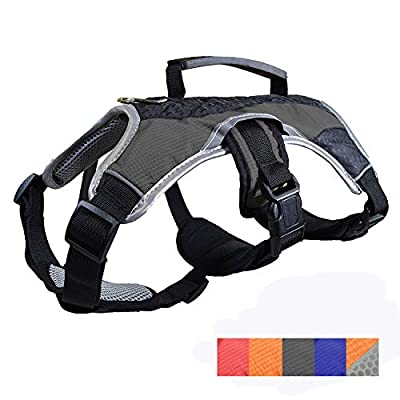 Dog Walking Lifting Carry Harness, Support Mesh Padded Vest, Accessory, Collar, Lightweight, No More Pulling, Tugging or Choking, for Puppies, Small Dogs (Black, Small), by Downtown Pet Supply