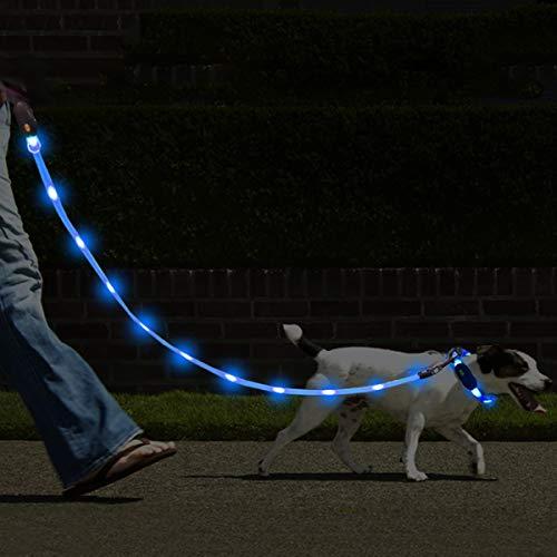 NAMSAN LED Hundeleine mit LED Hundehalsband USB Aufladbar Wasserdicht Sicherheit Hundehalsband-Leine für Hunde, 3 Leuchtmodi 20 Leuchtet (Blau)