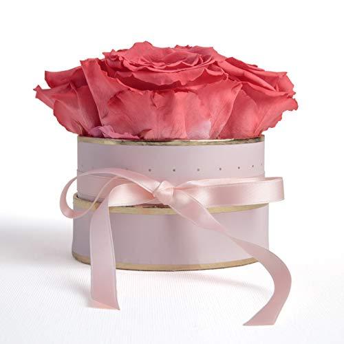 ROSEMARIE SCHULZ Heidelberg Rosenbox Flowerbox rund Infinity Rosen - Blumenbox in Rosa 4 konservierte Rosen (Rosa-Korall)