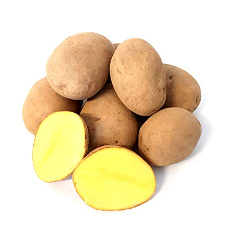 Kartoffel Afra mehlige Kartoffeln 1-25 Kg deutsche Speisekartoffel perfekt für Kartoffelsuppe, Püree, Gnocchi, Knödel, Kroketten, Ofenkartoffeln Aufläufe Salzkartoffeln auch zum Grillen geeignet (10)