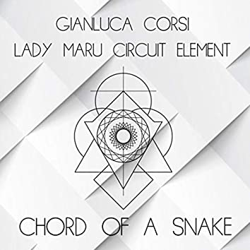 Chord of a Snake
