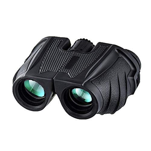 Review HAIRY Binoculars Low Light Night Vision Outdoor Portable Looking Glasses