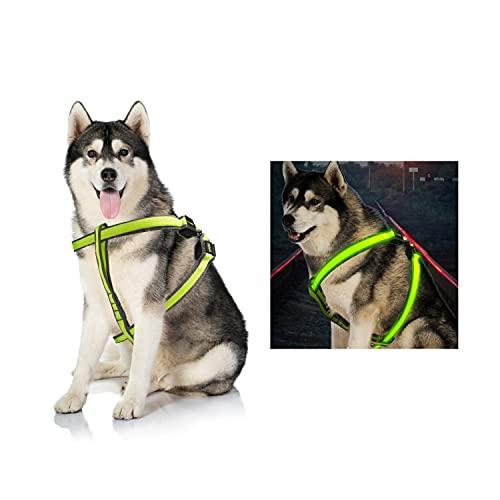 Dog Harness,LED Dog Vest USB Rechargeable Reflective Harness, Adjustable Lightweight Pet Vest (Large)