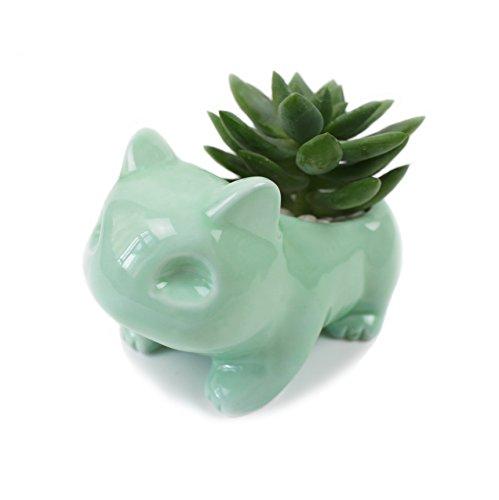 Maceta de cerámica verde con cerámica esmaltada, maceta adorable y suculenta con agujero para plantar flores