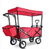 Phil Beauty Carrito Plegable con Dosel Carro Transporte con Frenos Playa con...