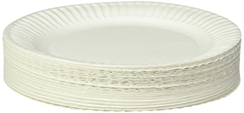 Empress Uncoated Paper Plate, 9 Inches, White, Pack of 100 - 1004997
