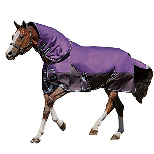 Weatherbeeta Comfitec Plus Dynamic Detach-A-Neck Blanket Medium Purple Black 75
