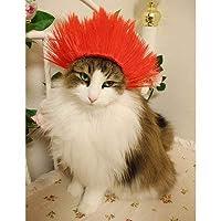 Wigs2you.com オリジナル 動物用 犬 猫 ペットウィッグ かつら コスチューム P-020 S 1.Neon Red
