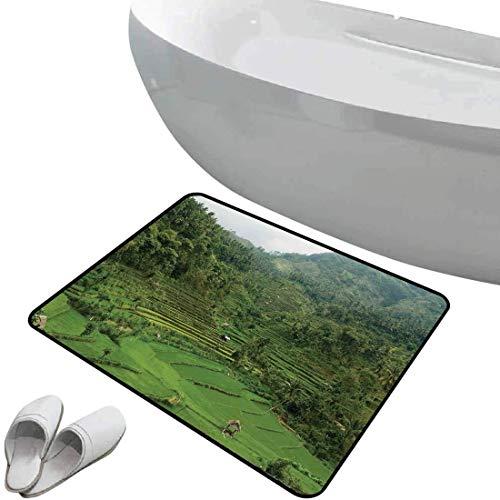Alfombra de baño antideslizante Decoración balinesa suave antideslizante Imagen de arrozales en terrazas en la ladera del valle tropical Tema de agricultura de agricultura asiática,verde Para ducha Fe