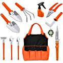 12-Piece Bechi Gardening Tools Set with Storage Tote Bag