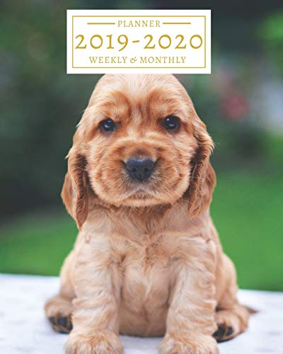 2019-2020: 16-Month Weekly and Monthly Planner/Calendar Sept 2019-Dec 2020 Cocker Spaniel Puppy Dog