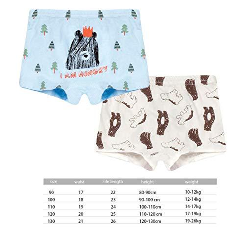 Huilongxin 2pcs Niños Niños Impresión Animal de los Boxeadores de la Ropa Interior de algodón de Dibujos...