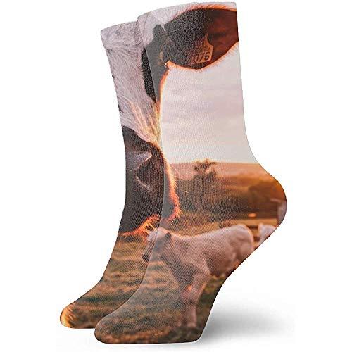 winterwang Impresión de arte artístico abstracto 3D lindo gato durmiendo vector antiguo unisex deporte calcetines de élite