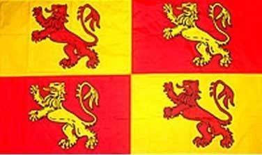 Owain Glyndwr Welsh Wales draak 5'x3' vlag Rood/Geel
