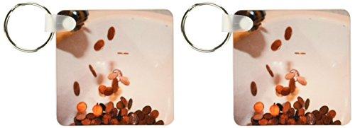 3dRose een witte porseleinen keukenwastafel met koperen pennies die eruit lijken te komen uit de kraansleutelhanger, 6 cm, variëteiten