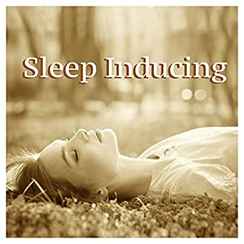 Sleep Inducing: Music for Deep Sleep and Fight Insomnia with Sea Waves, Thunderstorms and Rain