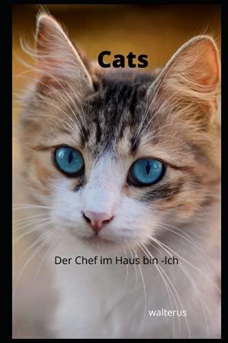 Cat`s: Der Chef im Haus bin - Ich