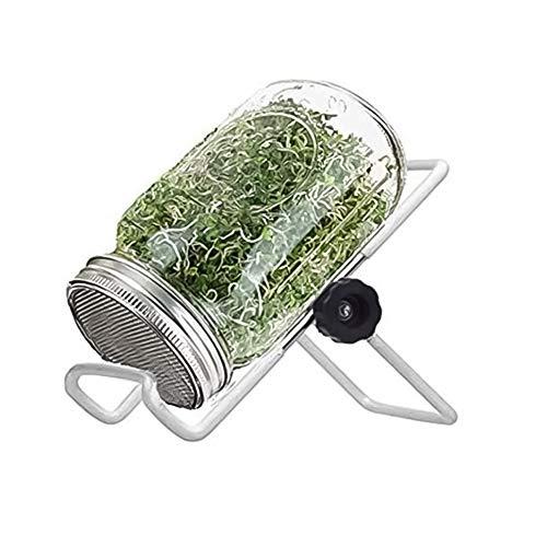 Germinazione Di Semi Di Mason Jar Sprouter Kit Germinazione Dei Semi Sprouter Set Con Coperchio Stand Sprouter Germinator Set Per La Crescita Broccoli Alfalfa Germogli Di Soia 500ml