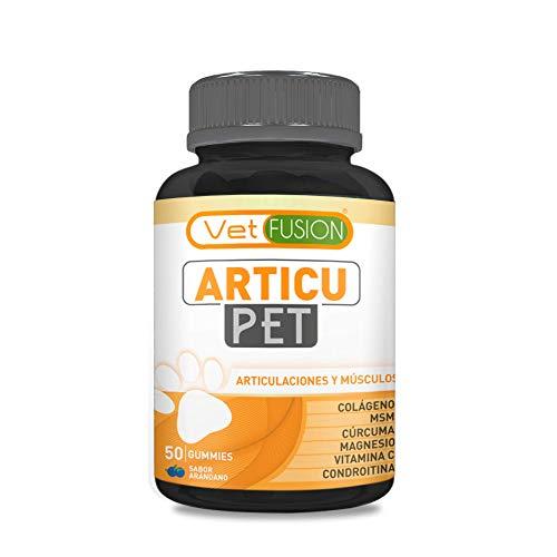 Antiinflamatorio Natural para Perros y Gatos | Colágeno + Cúrcuma + Condroitina...