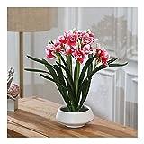 Flores Artificiales Artificial Narciso flor arte tridimensional pantalla conjunto de flores porche sala de estar interior mesa de comedor tv gabinete decoración Flores de plástico ( Color : Crimson )