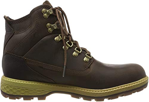 Jack Wolfskin Herren Jack MID M Combat Boots, Braun (Dark Wood/Mocca 5692), 40 EU