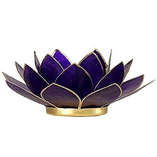 Panotophia Chakra Lotus Licht, Capiz Teelicht amethystviolett 7. Chakra Windlicht Kerzenhalter