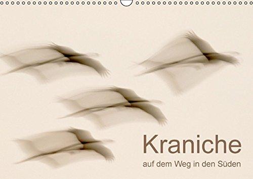 Kraniche auf dem Weg nach Süden (Wandkalender 2016 DIN A3 quer): Fantastische Stimmungen im Reich der Kraniche (Monatskalender, 14 Seiten ) (CALVENDO Tiere)